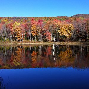 Vermont land trusts and land conservation